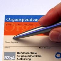 Organspendeausweis - © Thorben Wengert / pixelio.de